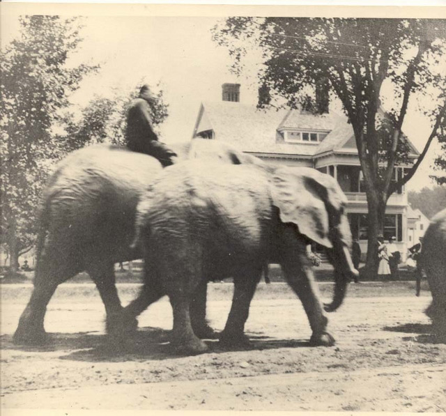 A circus parade passes by the present day Gibson Center. Circa 1900